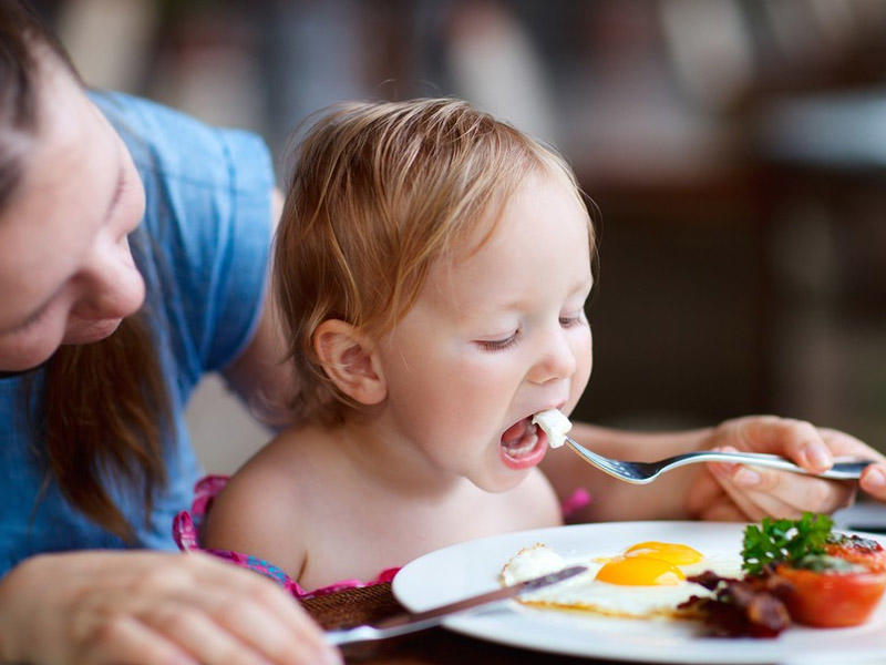 Toddler Nutrition: What Should You Feed Your Child?