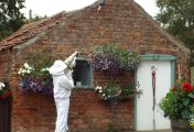 Tips to Prevent Pests from Hibernating in your Home