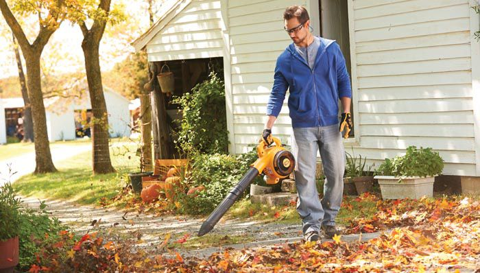 Leaf Blowers For Home Landscaping