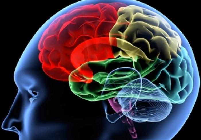 brain power with magnesium3