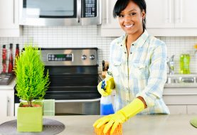 How Can You Start Getting a Housekeeper?