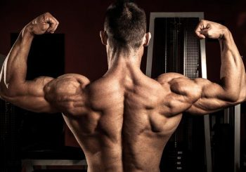 Ways to boost muscle building with LGD 4033