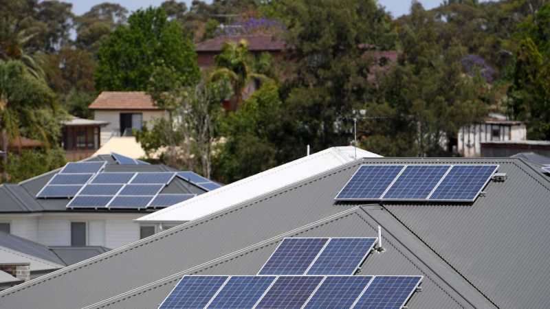 Expect More from South Australia's Best Solar Battery Provider